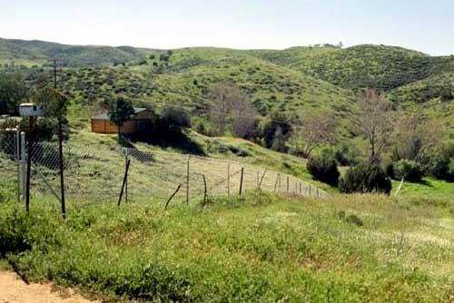 Old Fence Line