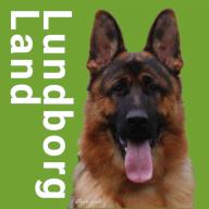 Lundborg-Land German Shepherd Dogs