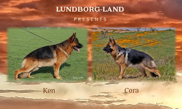 Ken x Cora Litter