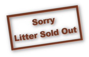 litter_sold_out3