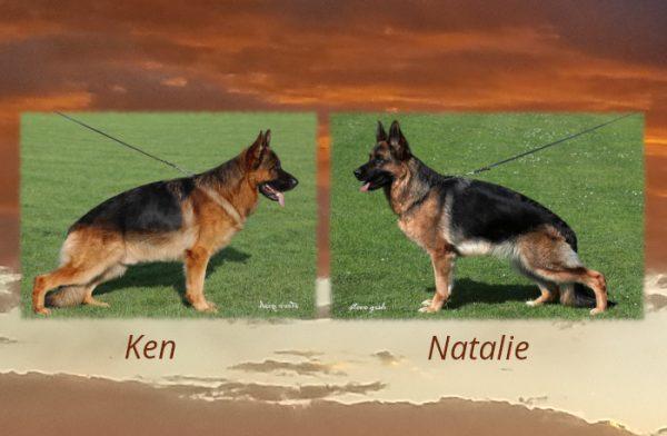 Ken x Natalie Litter