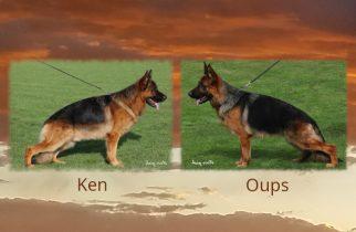 Ken X Oups Litter
