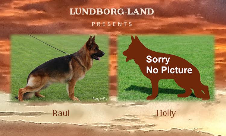 Raul x Holly Litter
