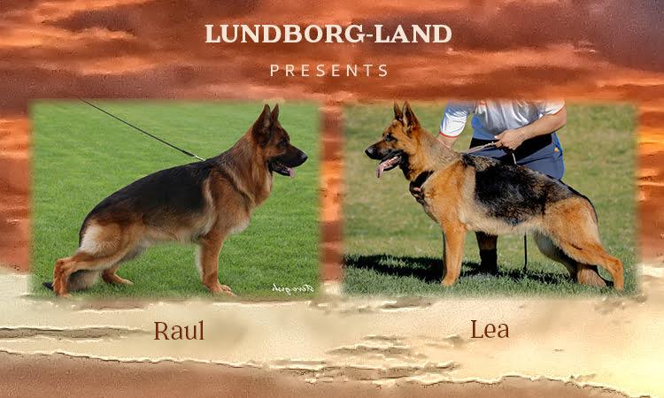 Raul x Lea Litter