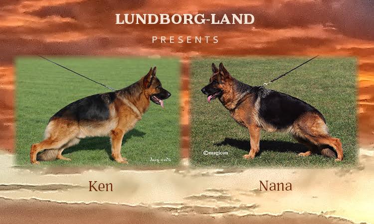Ken x Nana Litter